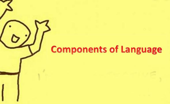 componen of language